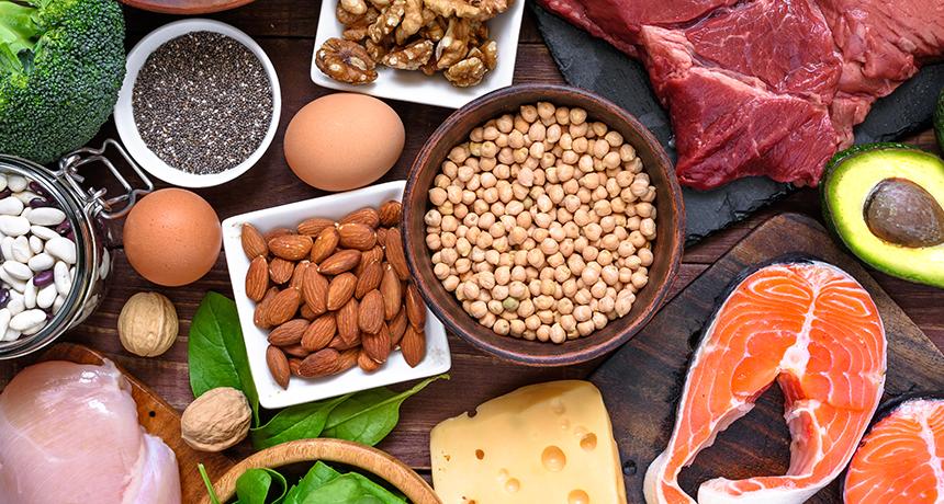 migliori fonti di proteine